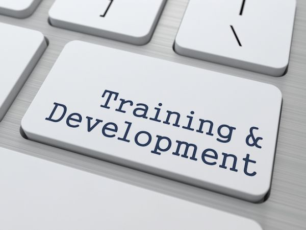 Training-Development.jpg